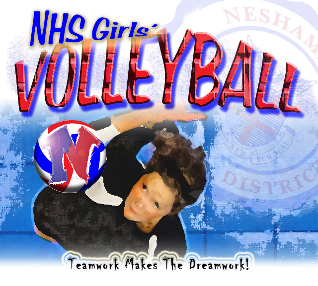 NHS Overview Volleyball web page